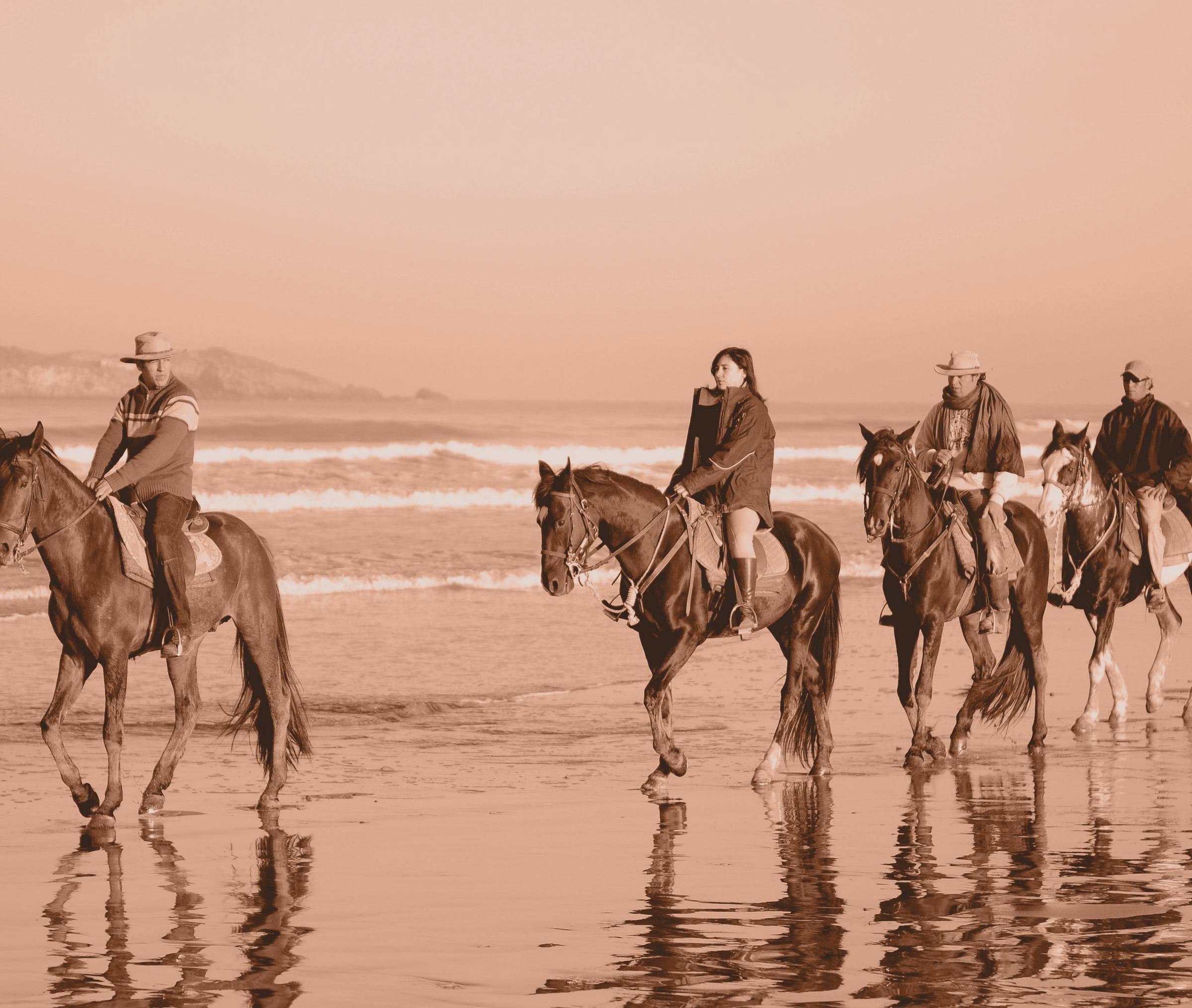 Ranch de Diabat - Who we are?
