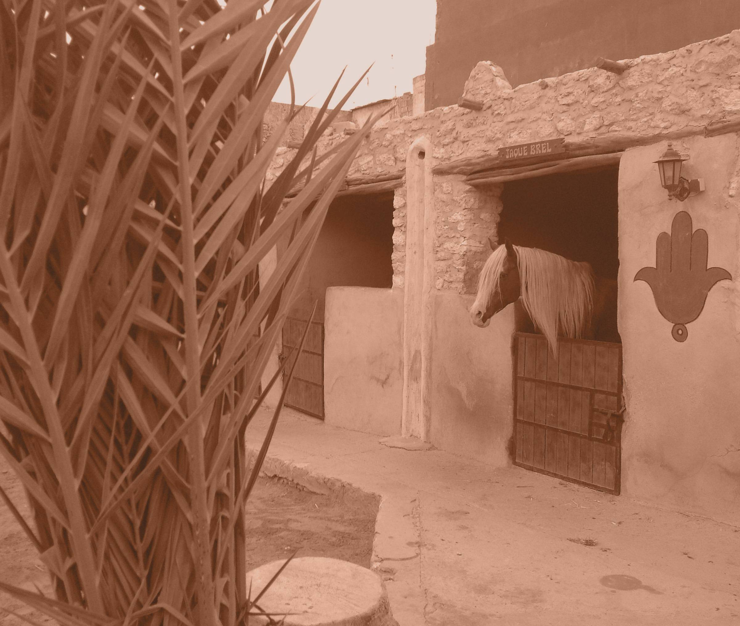Ranch de Diabat is located in Essaouira, Morocco.