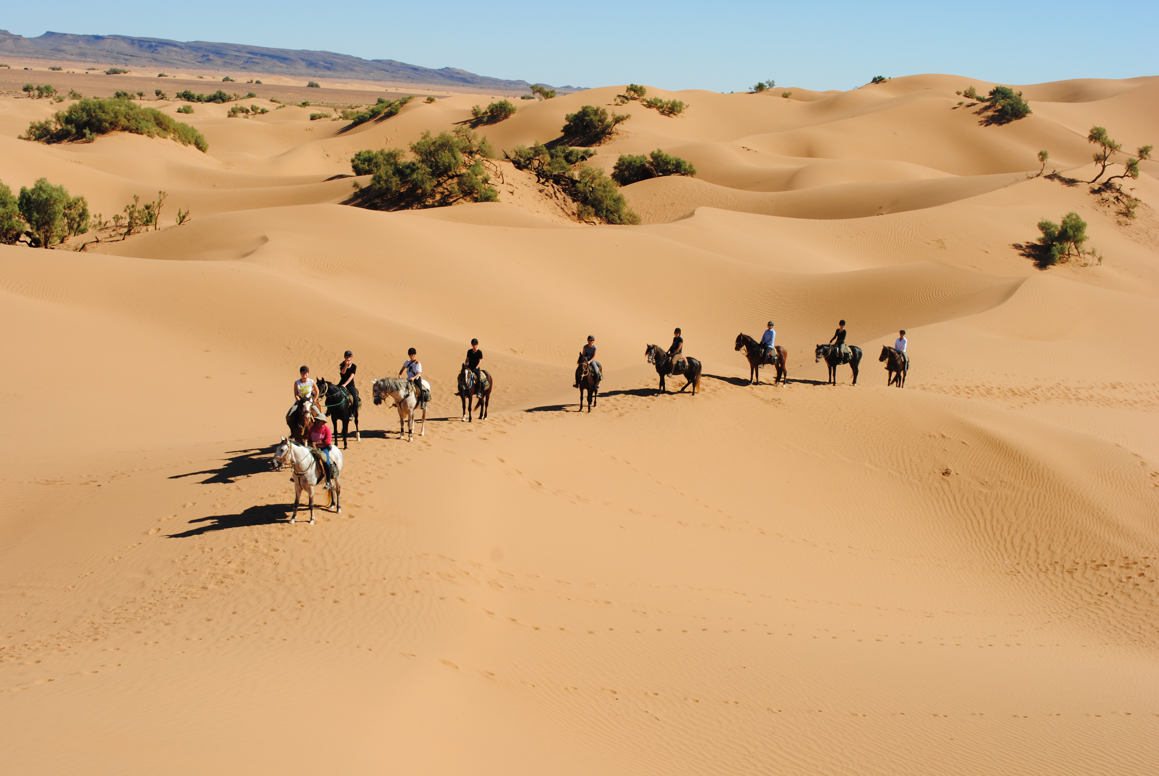 1 Day Horse Ride with overnight in Berber Tent