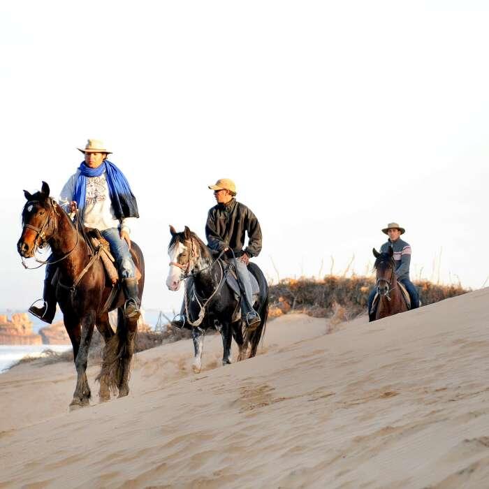 Escursione a cavallo di tre ore