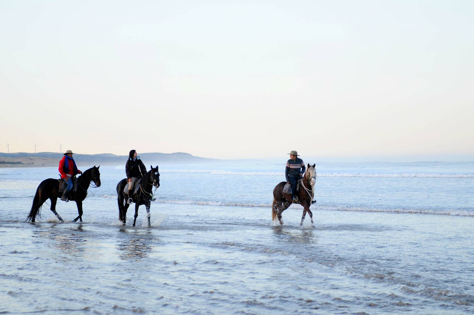 Escursione a cavallo di due ore