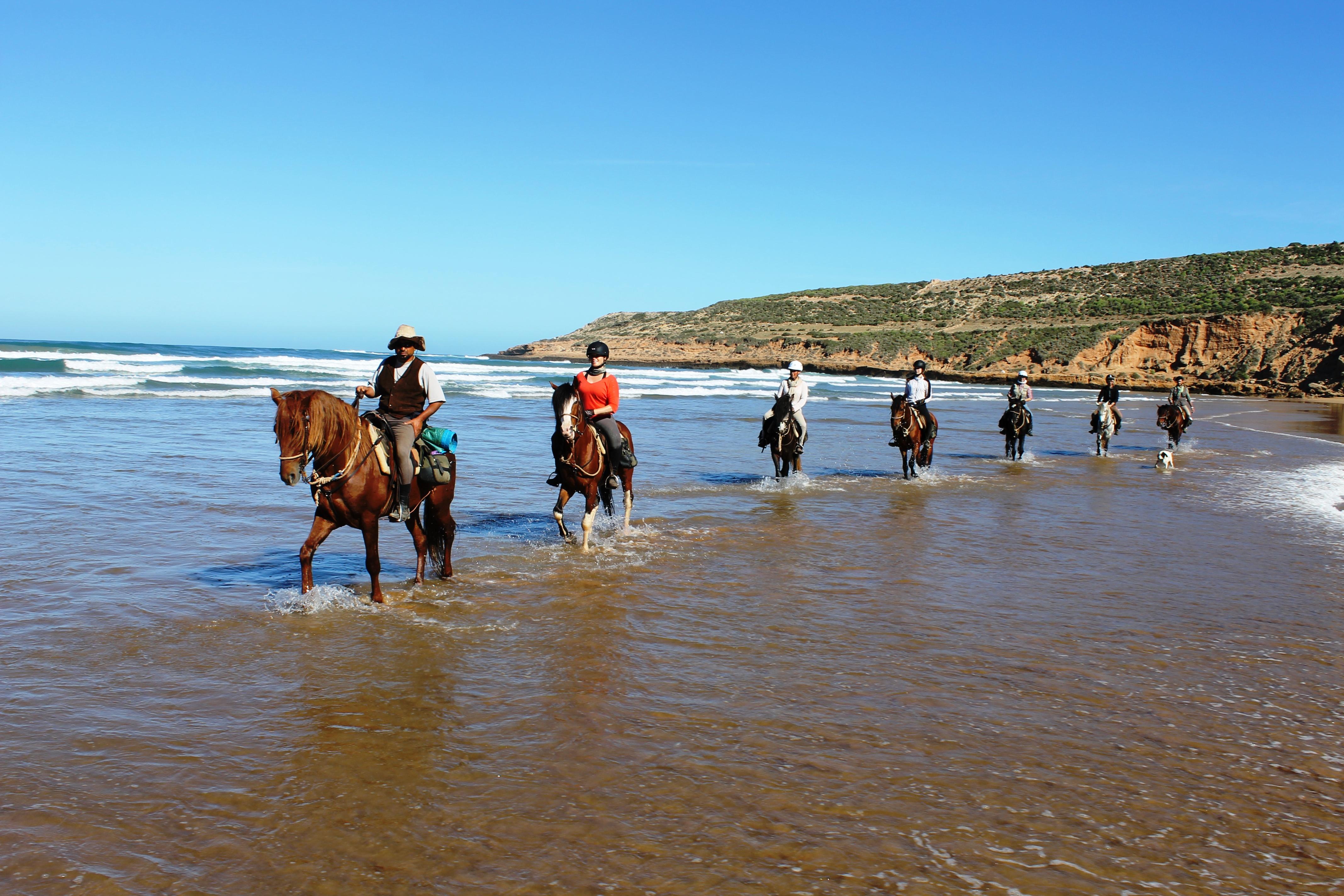 1 Hour Horse Ride