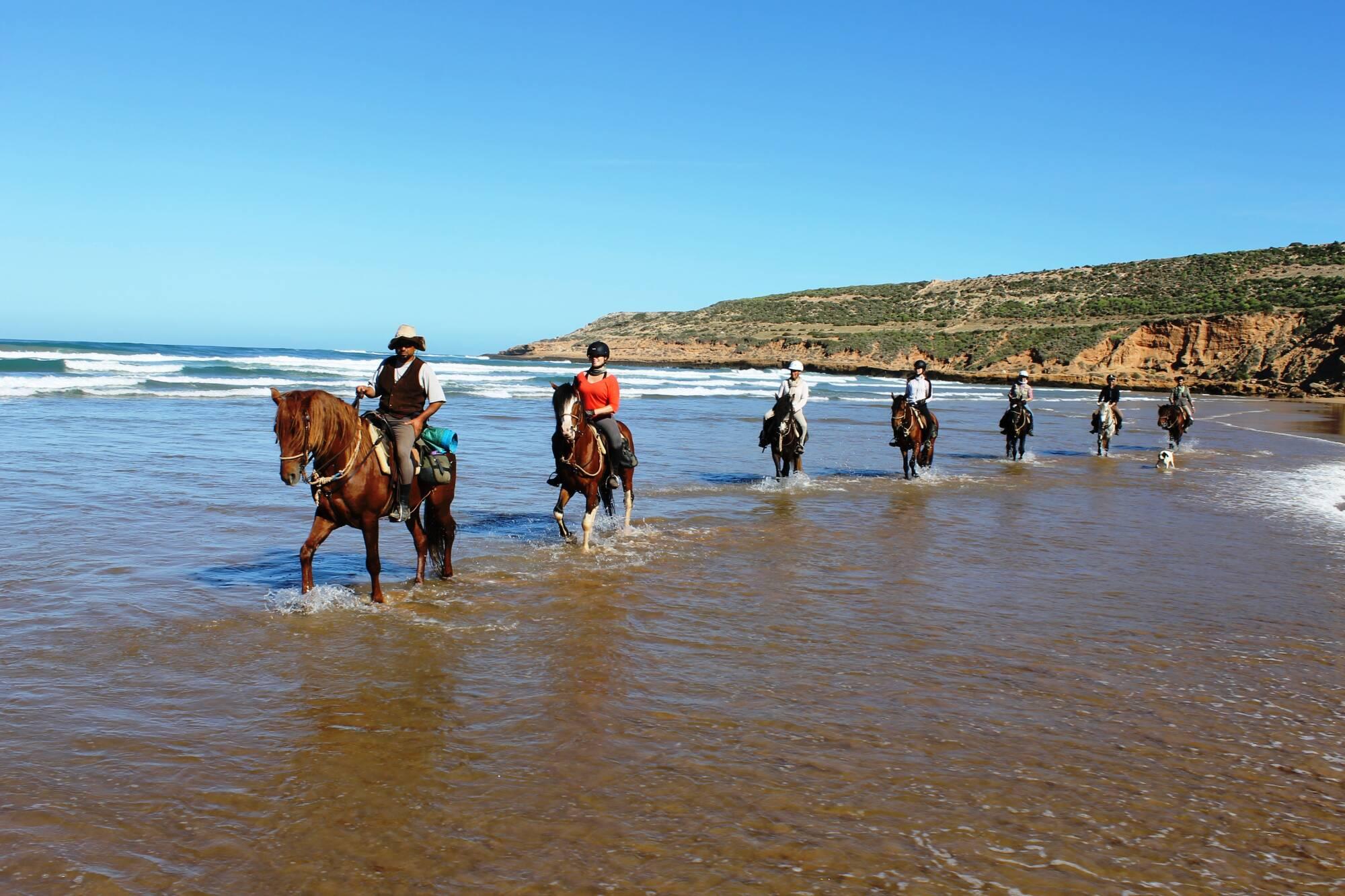 Escursione a cavallo di un'ora
