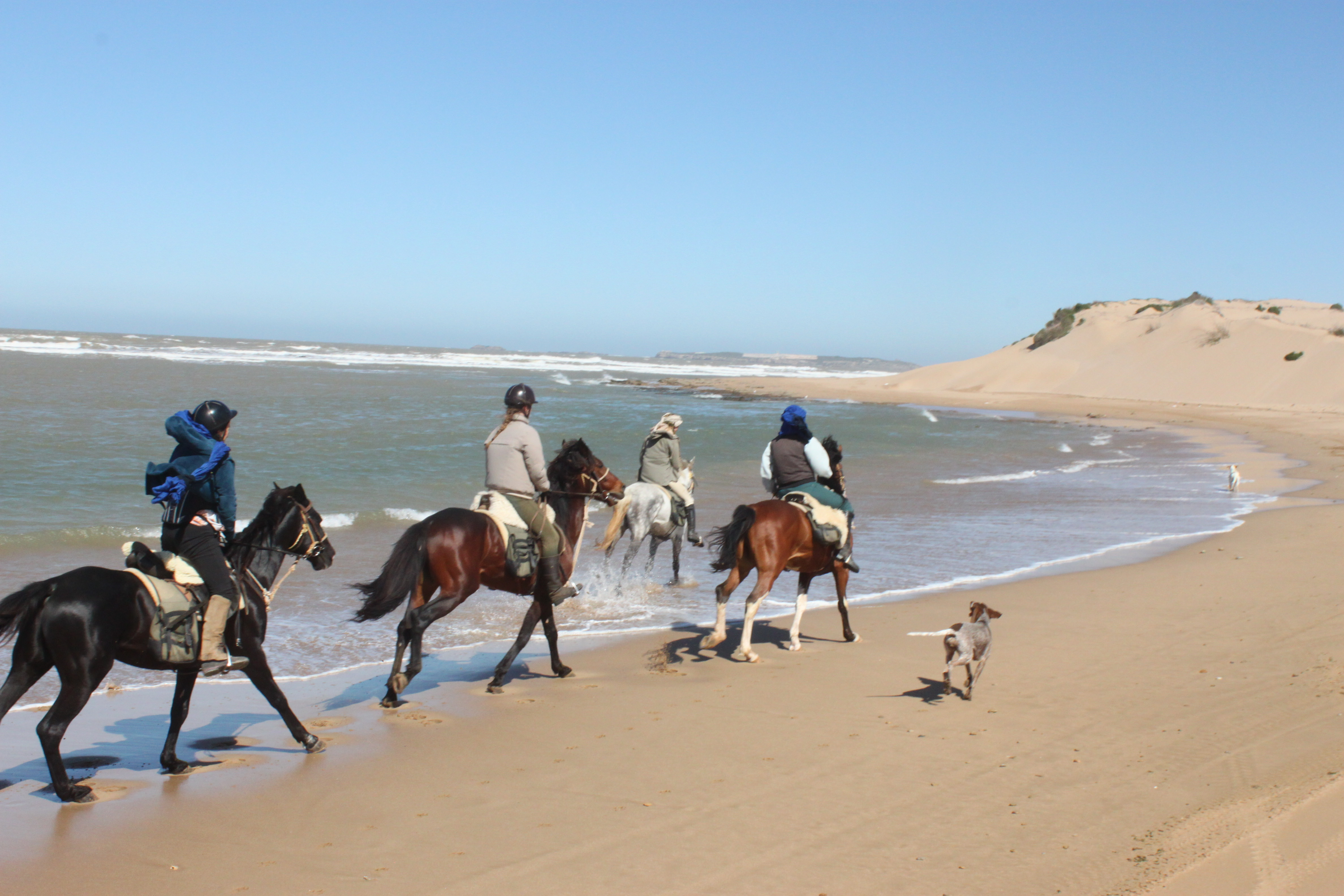 The Argan Horse Trek