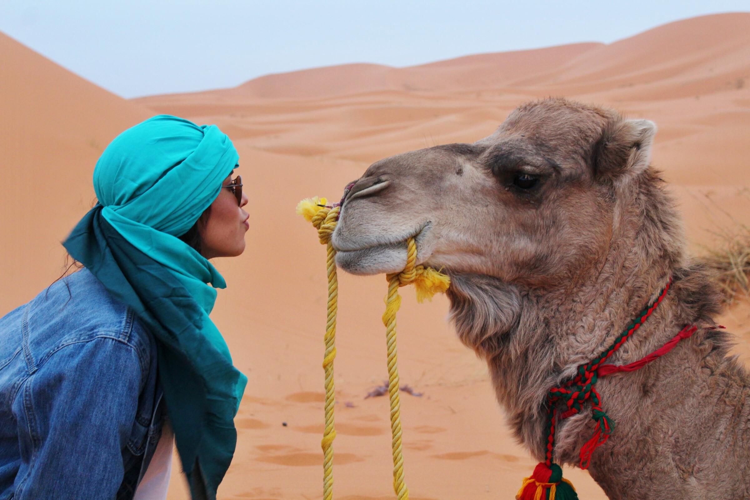Geschichte und Wissenswertes über Marokko