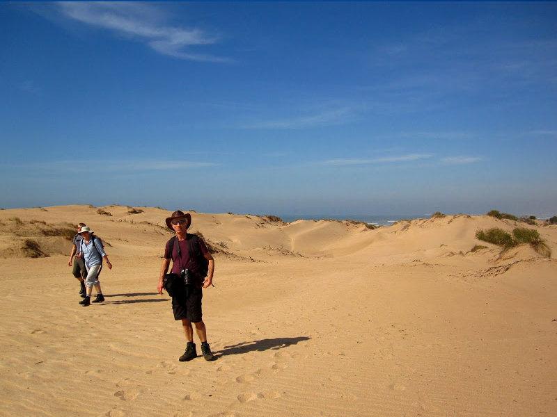 Three hour walking tour to Diabat