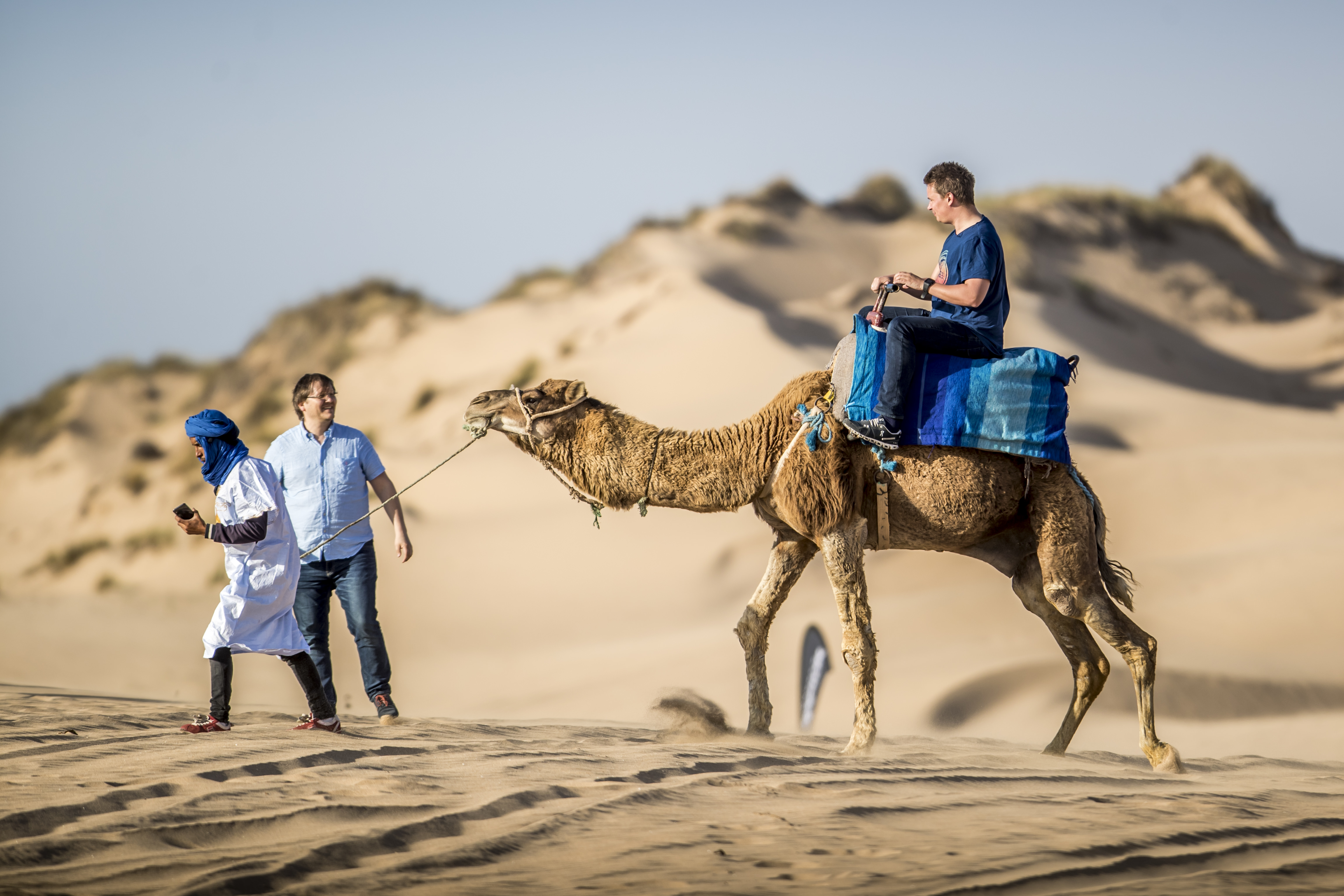 One day on a dromedary with overnight stay in a Berber tent