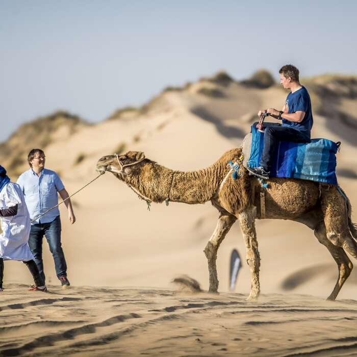 Un giorno in dromedario con pernottamento in tenda berbera