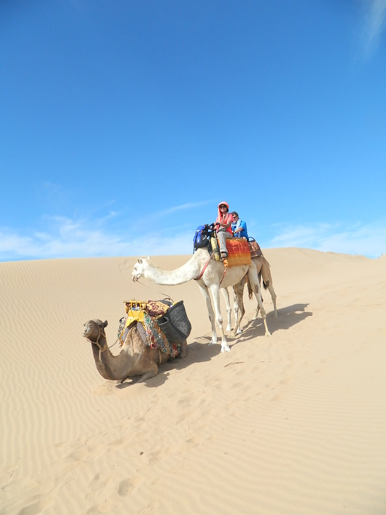 Camel Ride 3h with tea
