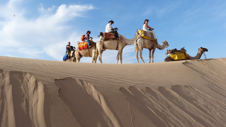Camel Ride 2h